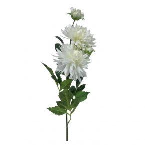 FLOWER DAHLIA WHITE