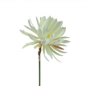 FLOWER NEW CACTUS SPRAY CREPIN 50CM